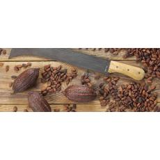 Какао-бобы – полезность для настроения