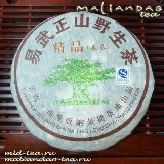 """Шен Пуэр """"Дикое дерево"""" (март 2008)"""